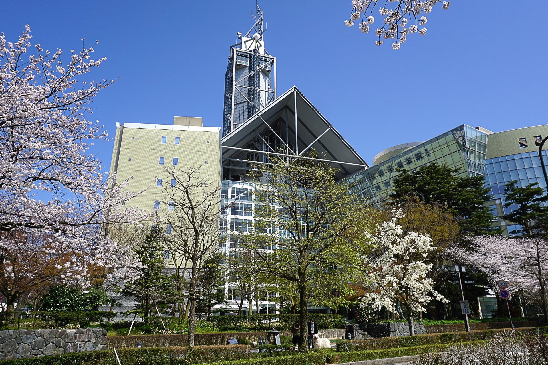 富山市、公立保育所5園にてコドモン導入決定